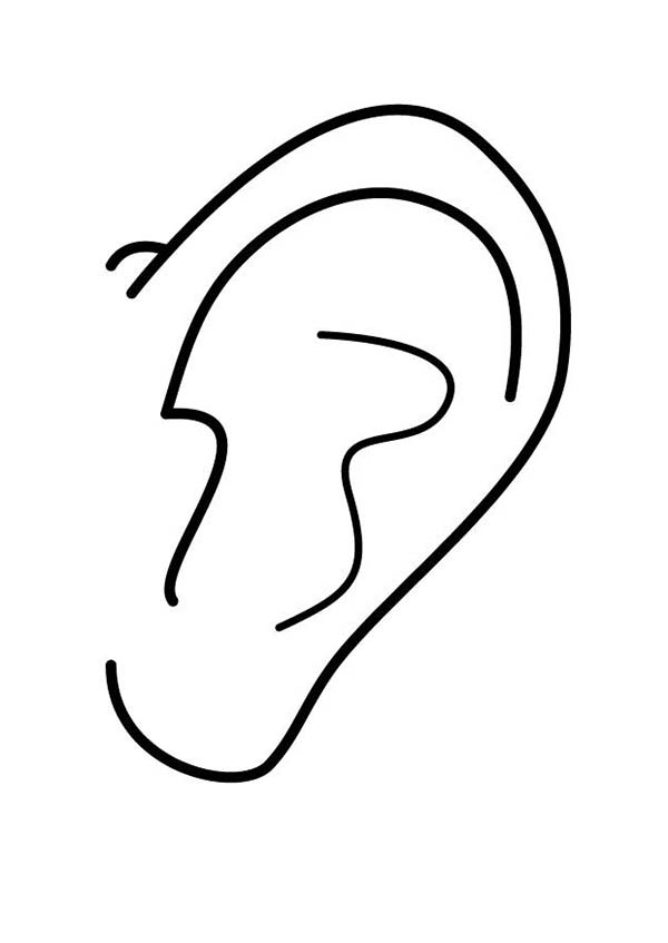 Ear, : Ear Picture Coloring Pages