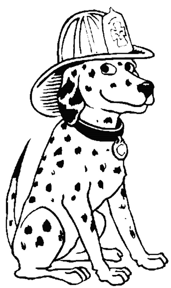 Fire Dog, : Fire Dog Wearing Firefighter Helmet Coloring Pages