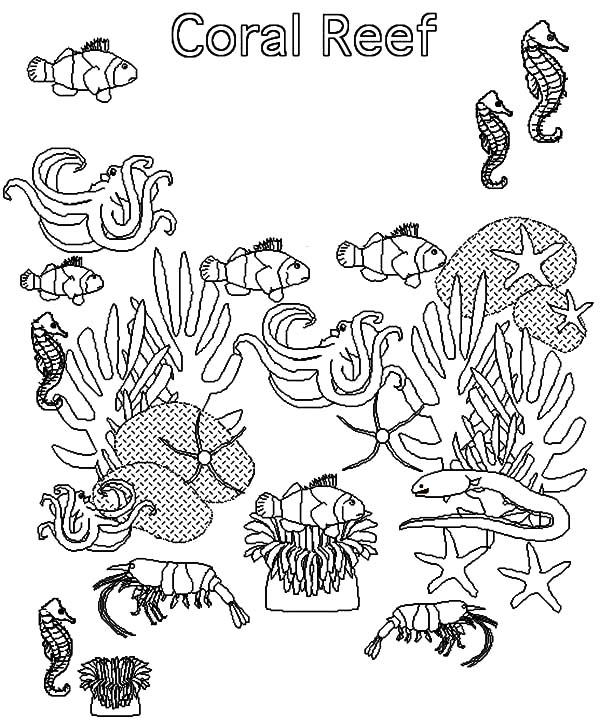 fish in coral reef ecosystem coloring pages kids play color. Black Bedroom Furniture Sets. Home Design Ideas