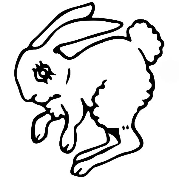 Hopping Bunny, : Hopping Bunny with Creepy Eye Coloring Pages