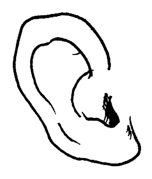 Ear, : How to Draw Ear Coloring Pages