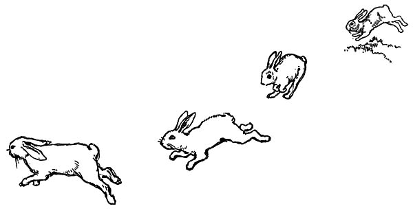 Hopping Bunny, : How to Draw Hopping Bunny Coloring Pages