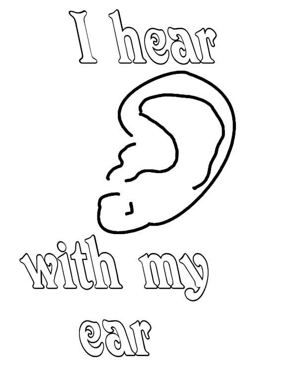 Ear, : I hear with My Ear Coloring Pages