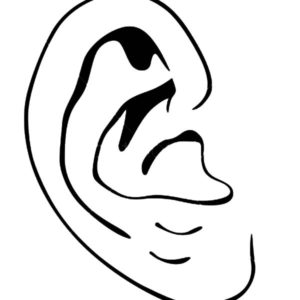 ears coloring pages - photo#18