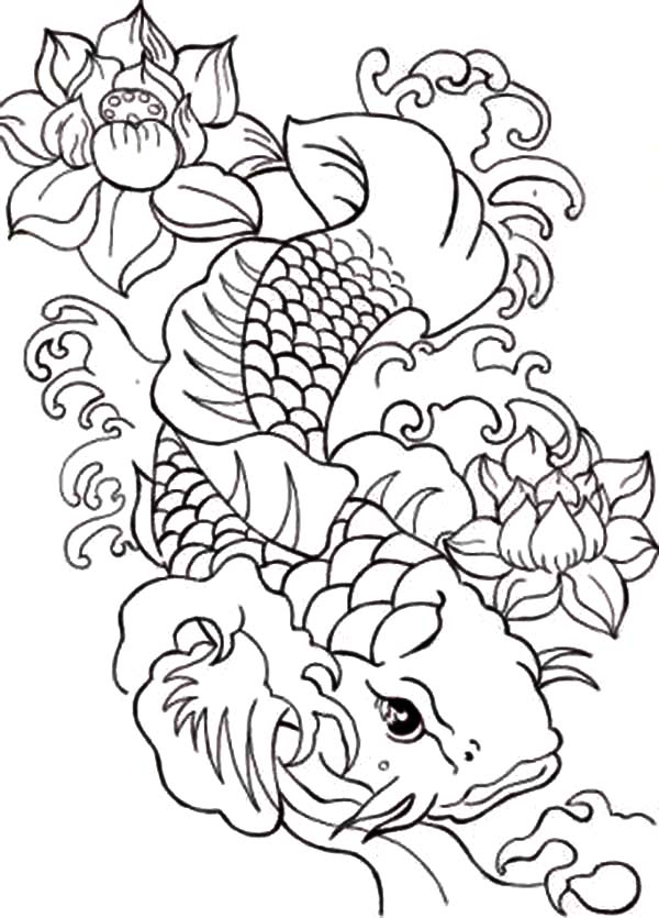 Coy Fish, : Japanese Coy Fish Coloring Pages
