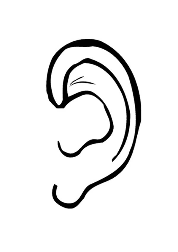 Ear, : Keep Your Ear Sharp Coloring Pages
