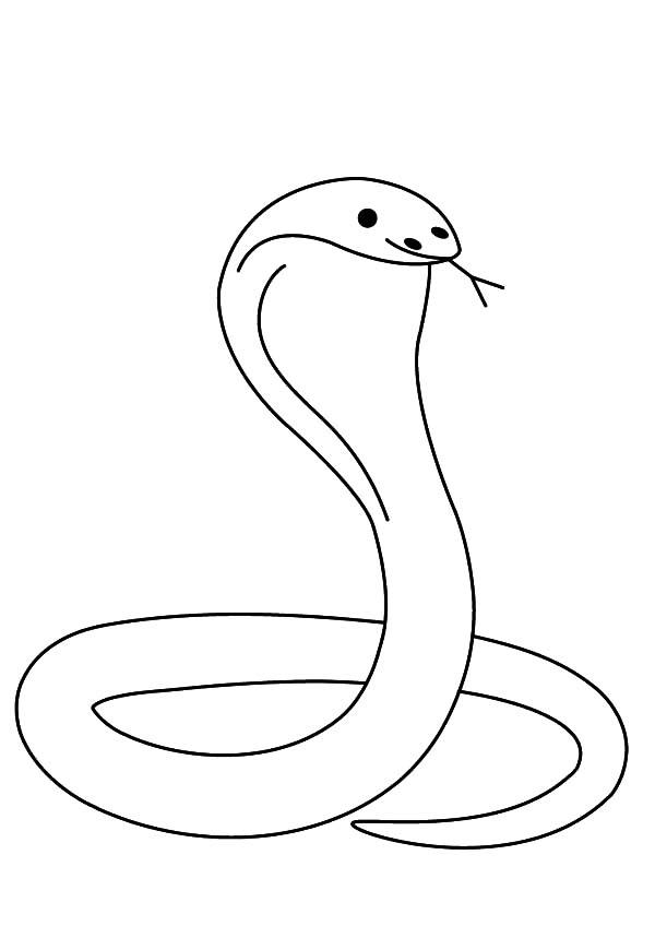 King Cobra, : King Cobra Outline Coloring Pages