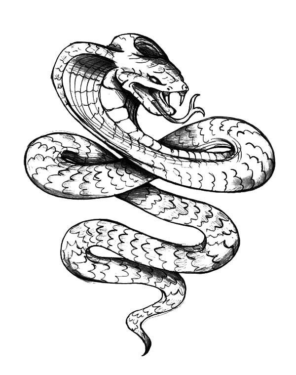King Cobra, : King Cobra Tattoo Coloring Pages