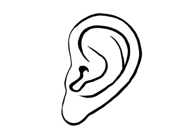 Ear, : Left Ear Coloring Pages