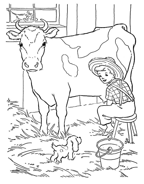 Cows, : Puppy Bark in Front of Cows Coloring Pages