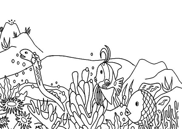 Coral Reef Fish, : Sea Snake Hunt for Coral Reef Fish Coloring Pages