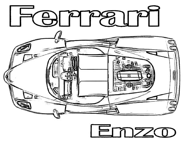 Ferrari Cars, : Top View Ferrari Enzo Cars Coloring Pages