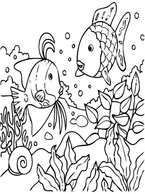 Tropical Fish Coral Reef Coloring Pages : Kids Play Color